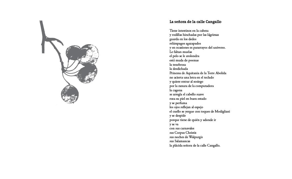 1 cangallo-burlon